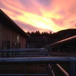 Sonnenuntergang Dez14